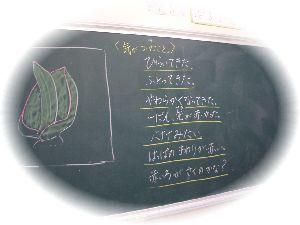 ファイル1620-1.jpg